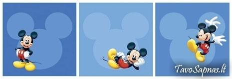 Lipdomi paveikslai Mikey Mouse|Satininės paklodės|TavoSapnas